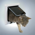 Frihed til katten (foto lavprisdyrehandel.dk)
