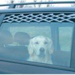 Hundegitter til bilen gør turen sikker (foto: lavprisdyrehandel.dk)
